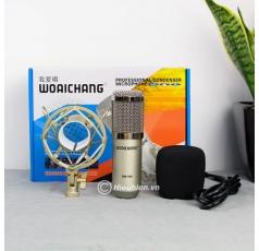 Mic thu âm BM-900, BM-999